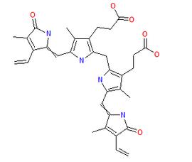 The structure of bilirubin
