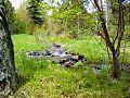 Birch Creek, UT Landscape.jpg
