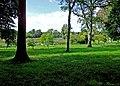 Birr Castle grounds - geograph.org.uk - 1362095.jpg