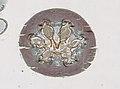 Blattodea (YPM IZ 098973) 006.jpeg
