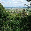 Blick in die Rheinebene - panoramio.jpg