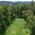 Blick vom Ludwigsturm - panoramio - Immanuel Giel.jpg