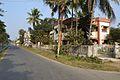 Block B Area - Kalyani - Nadia 2017-02-05 5434.JPG