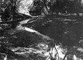 Boplatsbild samt floddal och floden omedelbart nedanför boplats. Pacifiksidan. Garachiné. Panama - SMVK - 003428.tif