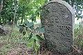Briceni Jewish Cemetery 30.JPG