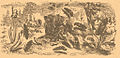 Brockhaus-Efron Elateridae.jpg