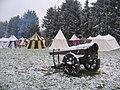 Bronromme 2066 - canon sous la neige.jpg
