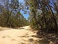 Brooman NSW 2538, Australia - panoramio (13).jpg