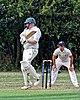 Buckhurst Hill CC v Dodgers CC at Buckhurst Hill, Essex, England 5.jpg