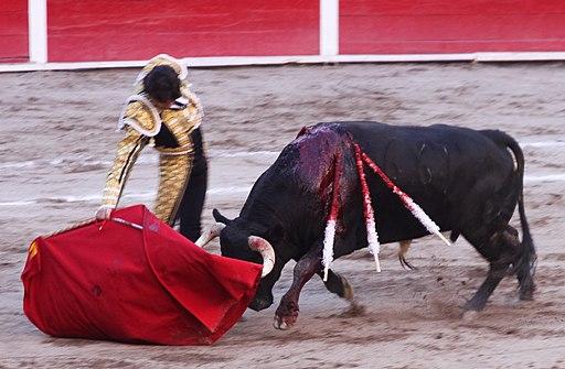 Bullfighting in aguascalientes