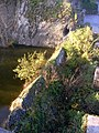 BurgStahleckBacharachHalsgraben.jpg