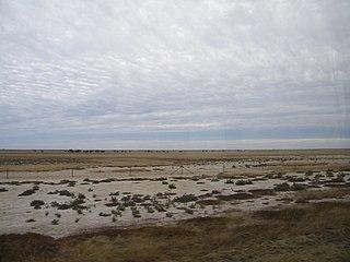 Suburb of Shire of Carpentaria, Queensland, Australia