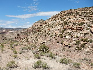 Burro Canyon Formation A geologic formation in Colorado, New Mexico, and Utah
