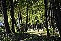 CHOSZCZNO - panoramio (248).jpg