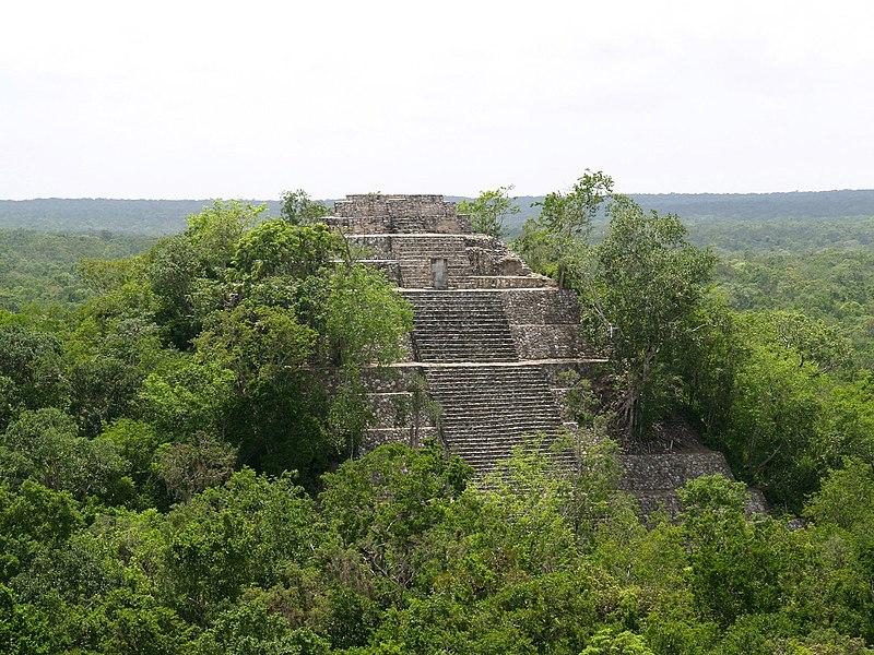 Calakmul Temple 1.