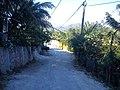 Calle ampliacion allende - panoramio (6).jpg