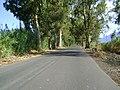Camino al Quinto Cuartel - panoramio.jpg
