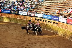 Rodeo chileno - Wikipedia d58dc583fa07