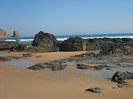 Phillip Island Surf Report Full Circle
