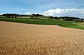 Carinthian fields Glanegg 07012007.jpg