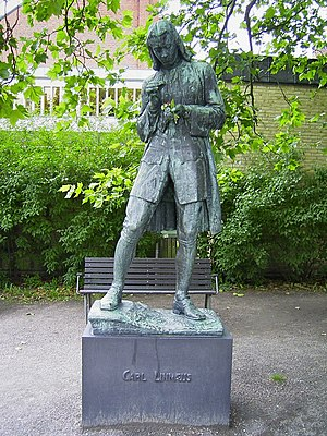Carl Linnaeus - Statue as a university student in Lund