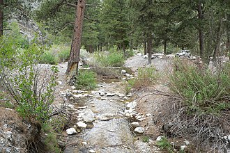 Carpenter Canyon - Carpenter Canyon with creek on the western side of the Spring Mountains, Nevada.