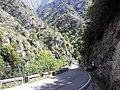 Carretera de los Beyos, Asturias. - panoramio.jpg