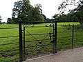 Cast iron gate to farmland. - geograph.org.uk - 507859.jpg