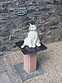 Ceasar the Town Cat - geograph.org.uk - 936036.jpg