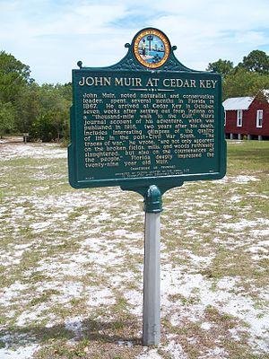Cedar Key Museum State Park - Historic marker commemorating John Muir's visit