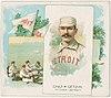 Charlie Getzien, Detroit Wolverines, baseball card portrait LCCN2007680733.jpg
