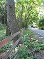Chemin de Senneville 06.JPG
