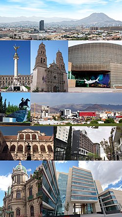 Chihuahua Capital Collage.jpg