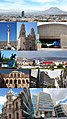 Chihuahua Capital Collage.jpg