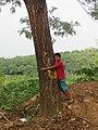 Child hugging tree at Peravoor (1).jpg