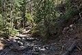 Chloride Creek - Flickr - aspidoscelis.jpg