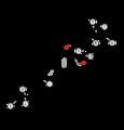 Circuit Paul Ricard.png