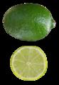 Citrus aurantifolia Mexican Lime.png