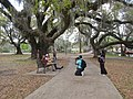 City Park New Orleans 11 March 2018 27.jpg