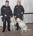 Class of 2015 MTA PD Canine Graduates (22176047240).jpg
