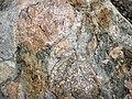 Clast-rich mixtite (Coleman Member, Gowganda Formation, Paleoproterozoic, ~2.3 Ga; Percival Lake roadcut, Ontario, Canada) 24 (47727367571).jpg
