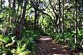 Clay County, FL, USA - panoramio.jpg