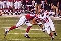Cleveland Browns vs. Atlanta Falcons (28514117964).jpg