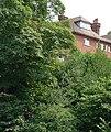 Clifftop House, Bramerton, Underhill Reach, River Yare - geograph.org.uk - 721685.jpg