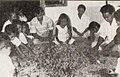 Cloves sorting, Kami Memperkenalkan Maluku dan Irian Barat, p13.jpg