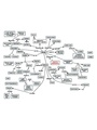 Cmap of Stress (Nat Geo) sapolsky.pdf