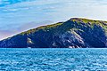 Coastline St John Newfoundland (41321615722).jpg
