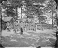 Company of 21st. Michigan Infantry, Sherman's veterans - NARA - 530547.tif