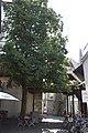 Constance est une ville d'Allemagne, située dans le sud du Land de Bade-Wurtemberg. - panoramio (112).jpg