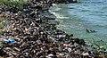 Contaminacion del Lago de Maracaibo 2.jpg